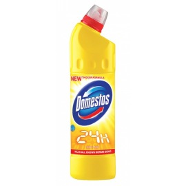 Domestos 24H 750ml Citrus